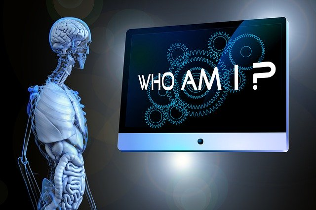 "A synthetic human staring to a screen that read ""Who am I?"""