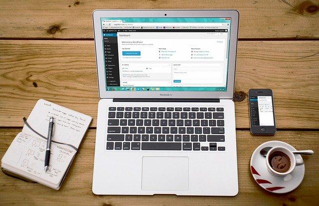 niche website case study